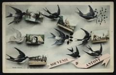 Souvenir d'Antony - Antony
