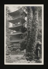 [Les Jardins Albert Kahn] - Boulogne-Billancourt