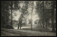 Allée sous Bois 92 Chaville