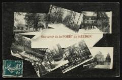 Souvenir de la forêt de Meudon - Meudon