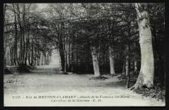 Bois de Meudon-Clamart - Abords de la Fontaine Ste-Marie - Carrefour de la Garenne - Meudon
