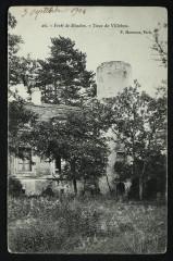 Forêt de Meudon - Tour de Villebon - Meudon