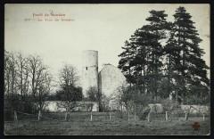 Forêt de Meudon - La Tour de Villebon - Meudon