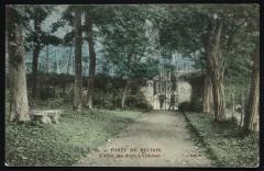 Forêt de Meudon - L'Allée des duels à Villebon - Meudon