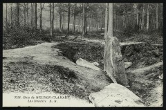Bois de Meudon-Clamart - Les Menhirs - Clamart