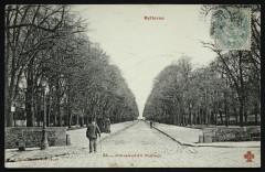 Bellevue-Meudon - L'Avenue du Château - Meudon