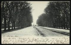 Bellevue - Avenue du Château - Meudon