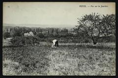 Vue sur la Jonchère - Rueil-Malmaison
