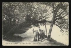 l'Arbre Penché 92 Ville-d'Avray