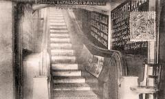 Escalier mécanique2 - Le Havre