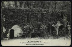 Bellevue - Les Ruines de la Glacière du Château de Mme de Pompadour, Favorite de Louis XV, vue pittoresque - Meudon