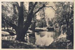 L2338 - Lagny-sur-Marne - Bords de Marne