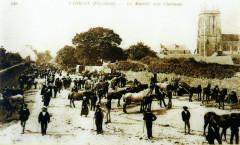 Carhaix 31 Le marché aux chevaux Place de l'église à la fin du XIXe siècle - Carhaix-Plouguer