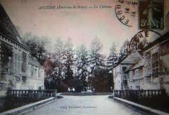 Cpa chateau avoines - Avoine