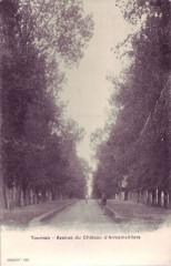 76-Tournan-Avenue du Château-d'Armainvilliers-1903 77 Seine et Marne