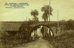 Guadeloupe Aqueduc de Capesterre