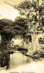 Guadeloupe Canal du Lamentin