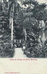Saint-Pierre, jardin des Plantes