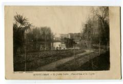 Drôme Montélimar le Jardin Public Pièce d'Eau et les cygnes - Montélimar