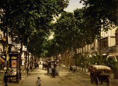 Avenue de la Gare, Nice, France, 1890-1900 - Nice