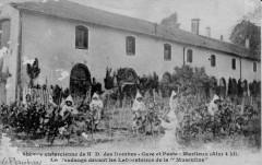Carte postale ancienne - Notre-Dame-des-Dombes - la vendange devant les laboratoires de la Musculine - Le Plantay