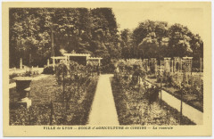 Cp - école d'agriculture de Cibeins - roseraie - Misérieux