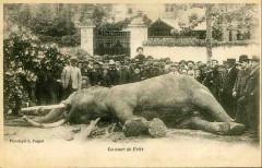 La Mort de Fritz - Tours