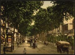 Avenue de la Gare, Nice, Riviera-LCCN2001699335