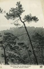 Ploézal - Château de la Roche-Jagu - Ploëzal
