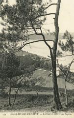 Saint-Michel-en-Grève - Baie à travers les sapins - Saint-Michel-en-Grève