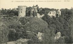 Tonquédec - Château vue d'ensemble côté ouest - Tonquédec