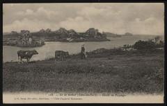 Ile-de-Bréhat - - Etude de paysage 22 Île-de-Bréhat