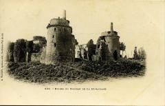 Plédéliac - Ruines du château de La Hunaudaye - Plédéliac