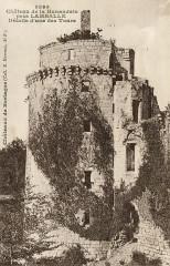 Plédéliac - Château de la Hunaudaie détails d'une des tours - Plédéliac