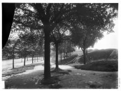 Poterne des Peupliers - Vue de végétation - Paris 13 - Médiathèque de l'architecture et du patrimoine - APMH00037754 - Paris 13e