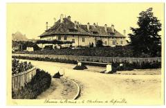 Haute-Savoie Thonon-les-Bains Le Château de Ripaille - Thonon-les-Bains
