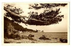 Var Toulon La Pointe Sainte-Marguerite Carte-photo - Toulon