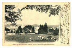 Jura Saint-Laurent-en-Grandvaux Vue prise du Bois des Dames animé - Saint-Laurent-en-Grandvaux