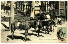 Auvergne 03 Allier Vichy La Place aux Anes animé - Vichy