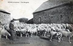 Rodez Une Bergerie (BELLE Cpa Animee - Rodez