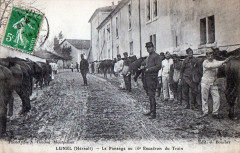 Lunel Le Pansage Au 16e Escadron Du Train (Belle Animation - Lunel