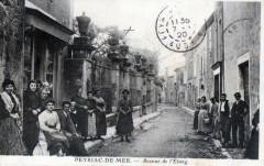Peyriac De Mer Avenue De L'Etang (Animation Superbe - Peyriac-de-Mer