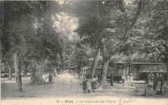 Gray La Promenade Des Tilleuls (animée - Gray