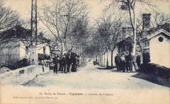 Esperaza Avenue De Limoux (animée - Espéraza