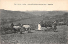 Env.brioude Frugieres Le Pin Vallee De Lavaudieu - Lavaudieu