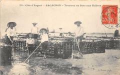 Arcachon Travaux Au Parc Aux Huitres (Beau Cliche - Arcachon