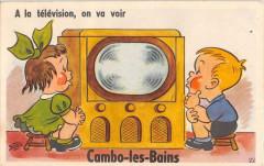 Cambo Les Bains Jolie Cpa A Systeme Avec Plusieurs Vues A La Television O - Cambo-les-Bains