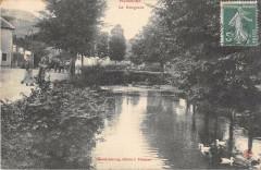 Poissons Le Rongeant - Poissons