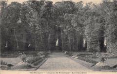 Ruines De Montlhery - Montlhéry