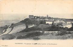 Vaudemont Vue Generale La Tour Brunehaut - Vaudémont